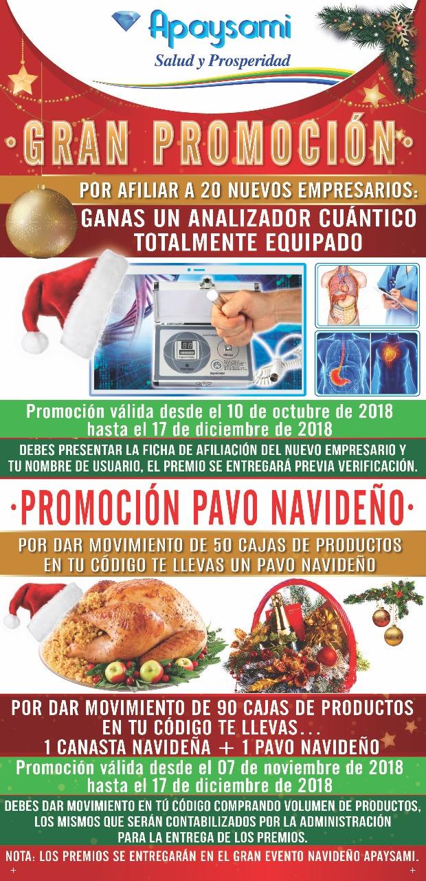 Promo Navideña